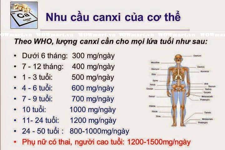 nhu-cau-canxi-cua-co-the