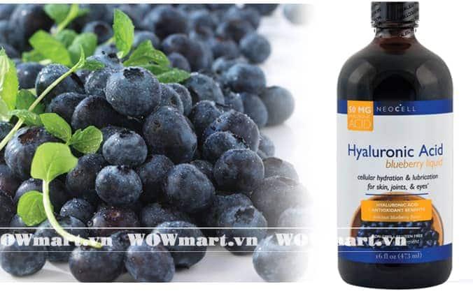Giới thiệu sản phẩm Neocell Acid Blueberry Liquid
