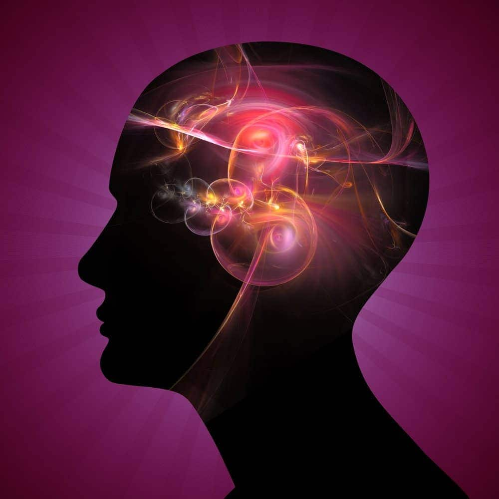 Viên uống bổ não Mason Ginkgo Biloba Mental Alertness 500mg 180 viên