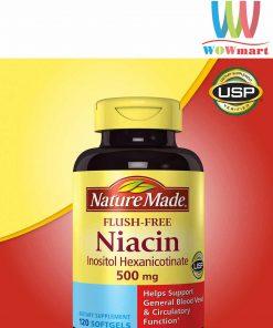 thuoc-giam-cholesterol-trong-mau-nature-made-flush-free-niacin-500-mg-120-vien-2018