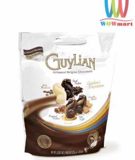bich-hon-hop-6-loai-socola-guylian-chocolate-6-mix-flavours-522g-tu-bi