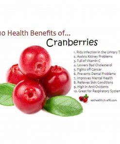 Nam việt quất sấy khô Ocean Spray Craisins Whole Dried Cranberries 1.8kg