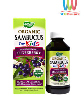 Siro cho trẻ em Nature's Way Sambucus for Kids Elderberry Syrup 120ml