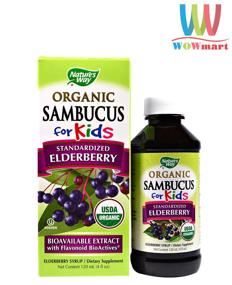 Siro cho trẻ em Nature's Way Sambucus for Kids Elderberry Syrup 120ml