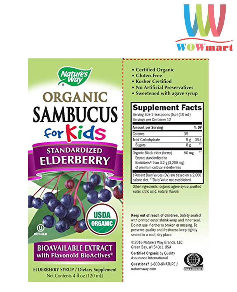 Siro tăng đề kháng cho trẻ em Nature's Way Organic Sambucus for Kids Elderberry Syrup 120ml