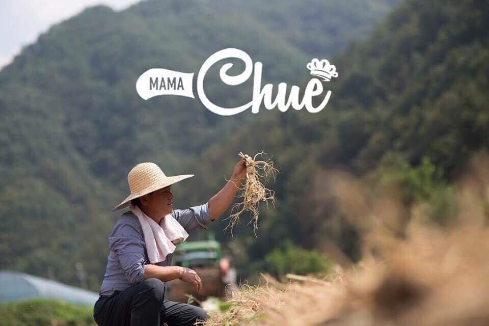 Sâm mật ong nhụy hoa nghệ tây Mama Chuê Hàn Quốc 500ml