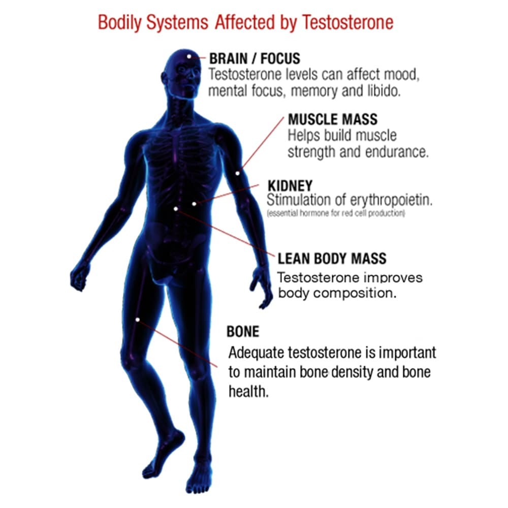 Viên uống tăng cường testosterone cho nam giới Weider Prime Testosterone Support 120 viên