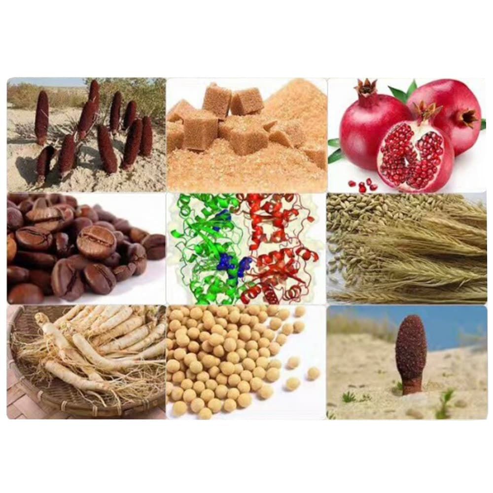 Kẹo sâm Hamer Ginseng & Coffee tăng cường sinh lý nam giới hộp 30 viên