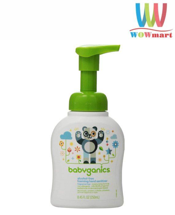 Nước rửa tay khô Babyganics Foaming Hand Sanitizer 250ml (không cồn, không mùi)