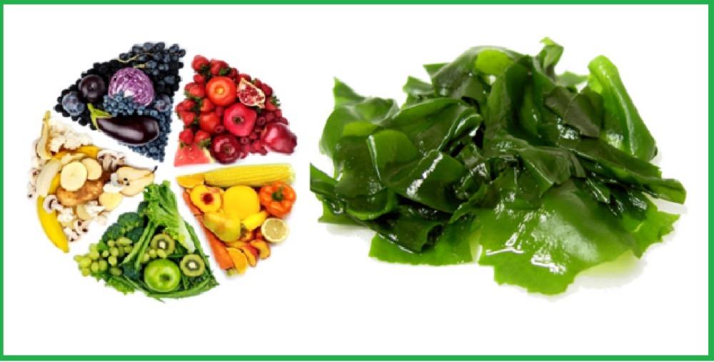 Viên uống Vitamin tổng hợp Nature's Way Complete Daily Multivitamin 200 Viên – Wowmart VN | 100% hàng ngoại nhập