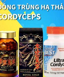 Đông trùng hạ thảo /Cordyceps