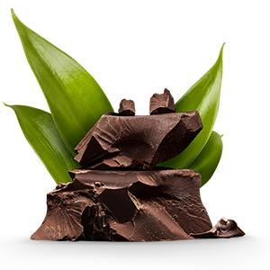 Bột Protein Vega One All-In-One-Shake vị Chocolate 926g