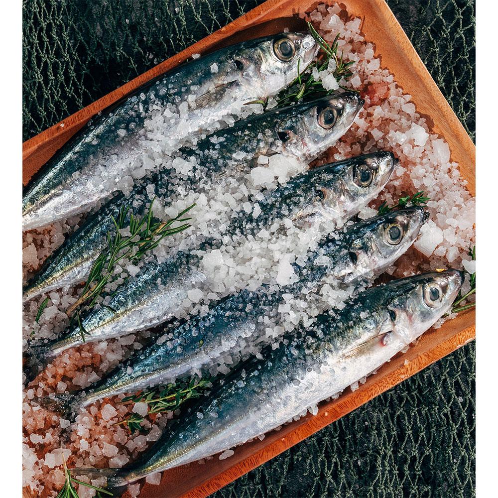 Viên bổ sung Omega 3 không mùi Swisse Wild Fish Oil 1,000mg Omega 3 500 viên